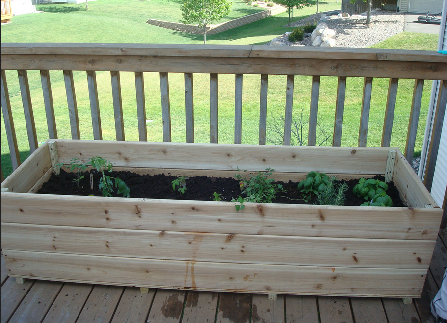 small plants in deck garden