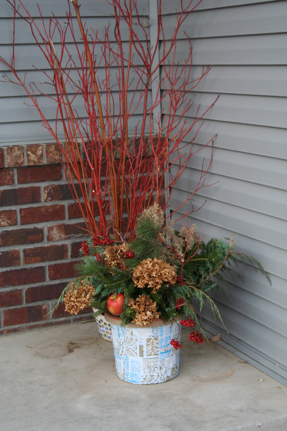holiday container and red twig dogwood