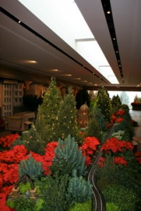Winter Wonderland at Chicago Botanic.