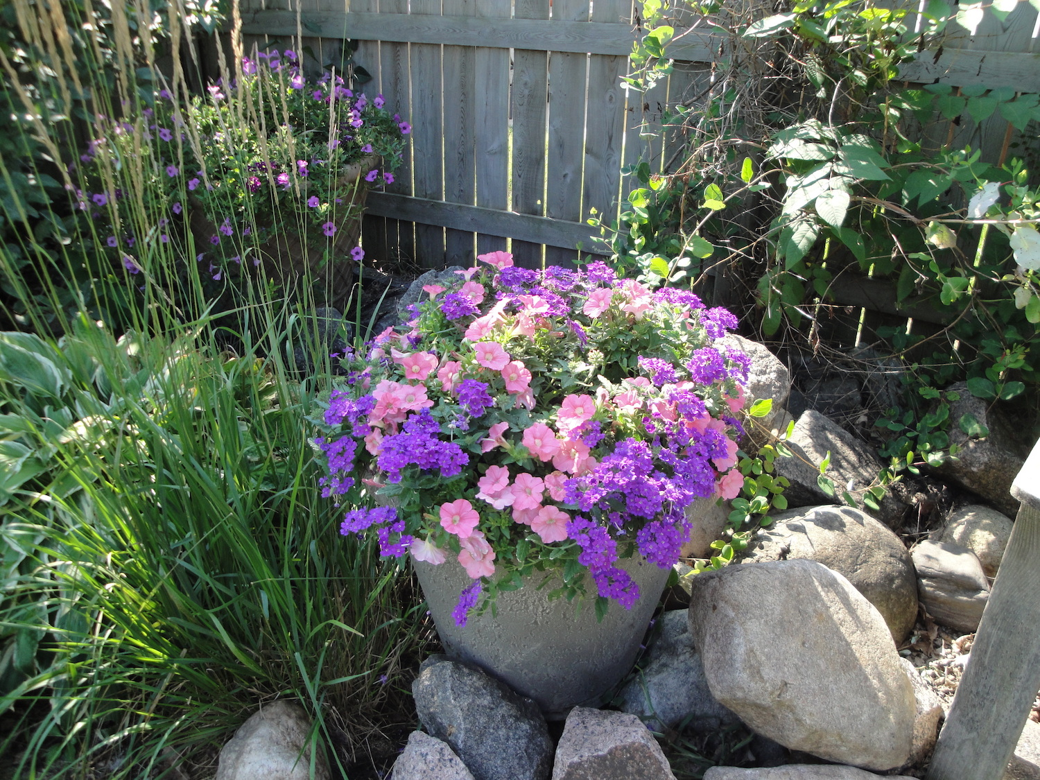 container in rock garden
