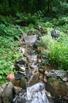 stream in northern garden