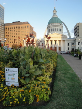 urban gardening and the iconic St. Louis archway