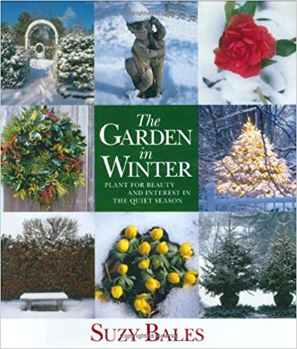 garden in winter cover