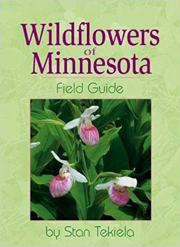 wildflowers of mn cover
