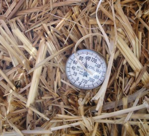 thermometer takes the straw bales temperature