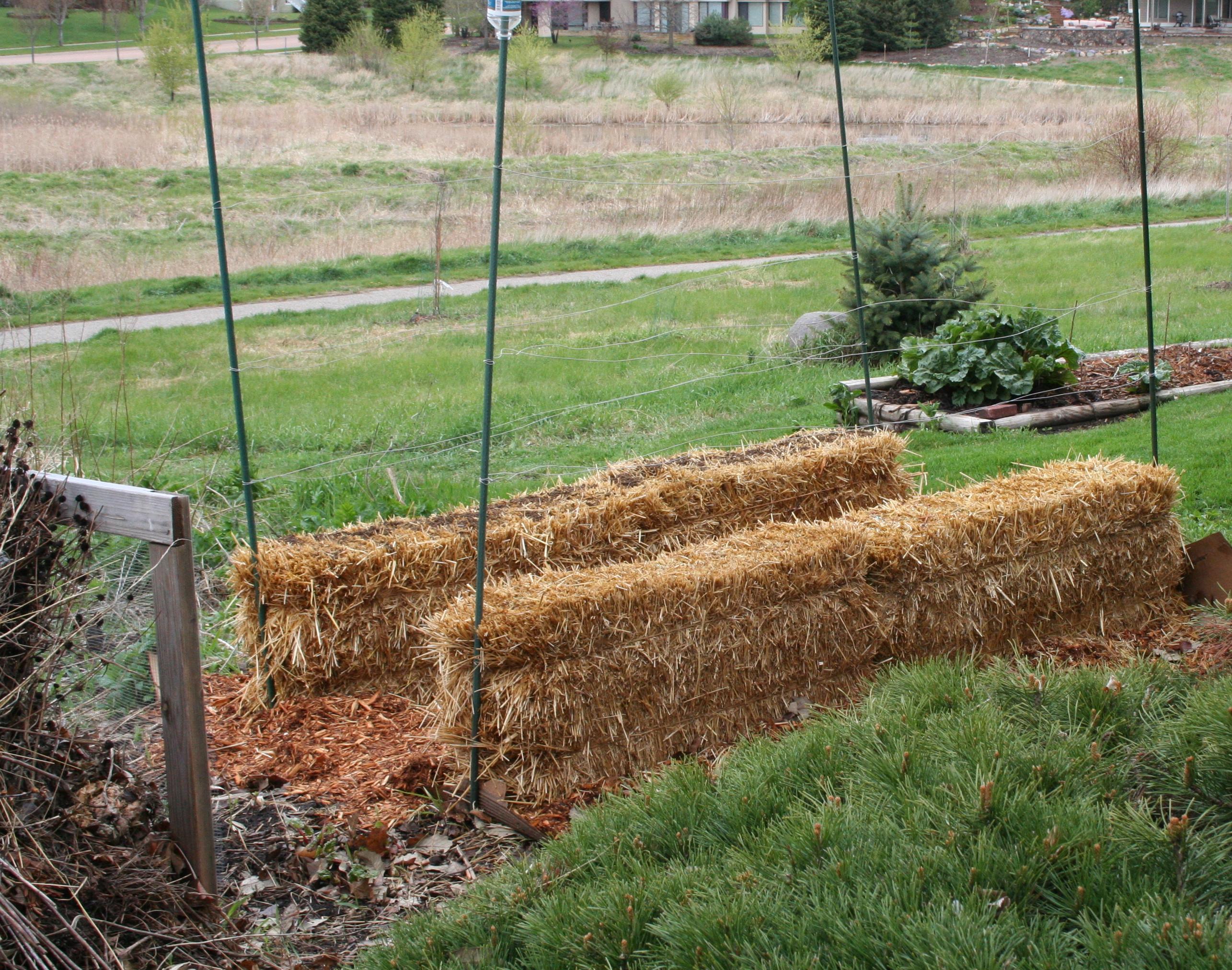 New Straw Bale Garden My Northern Garden