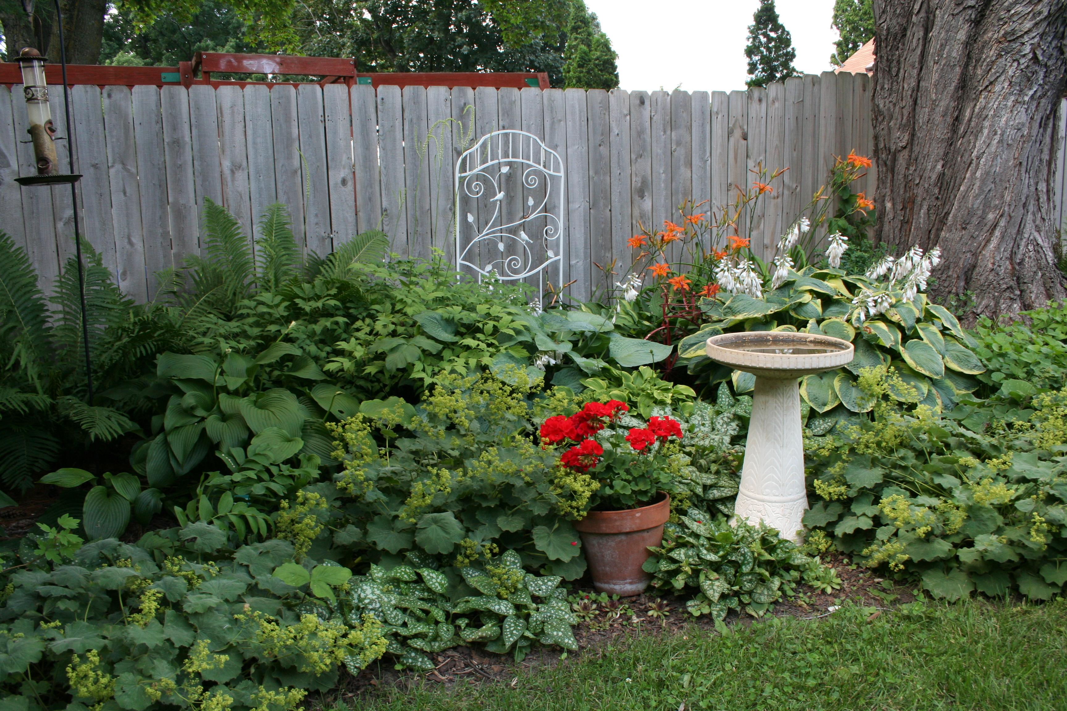 Urban gardens my northern garden - Weeding garden make work easier ...