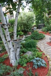 Path in garden