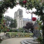 Another Paris shot, taken by my daughter, of Notre Dame through a rose arbor across the Seine.