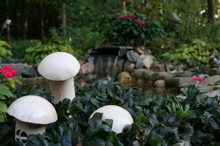 I took this in late summer at the gorgeous garden of a Rice County Master Gardener. The little mushrooms add whimsy to the garden.