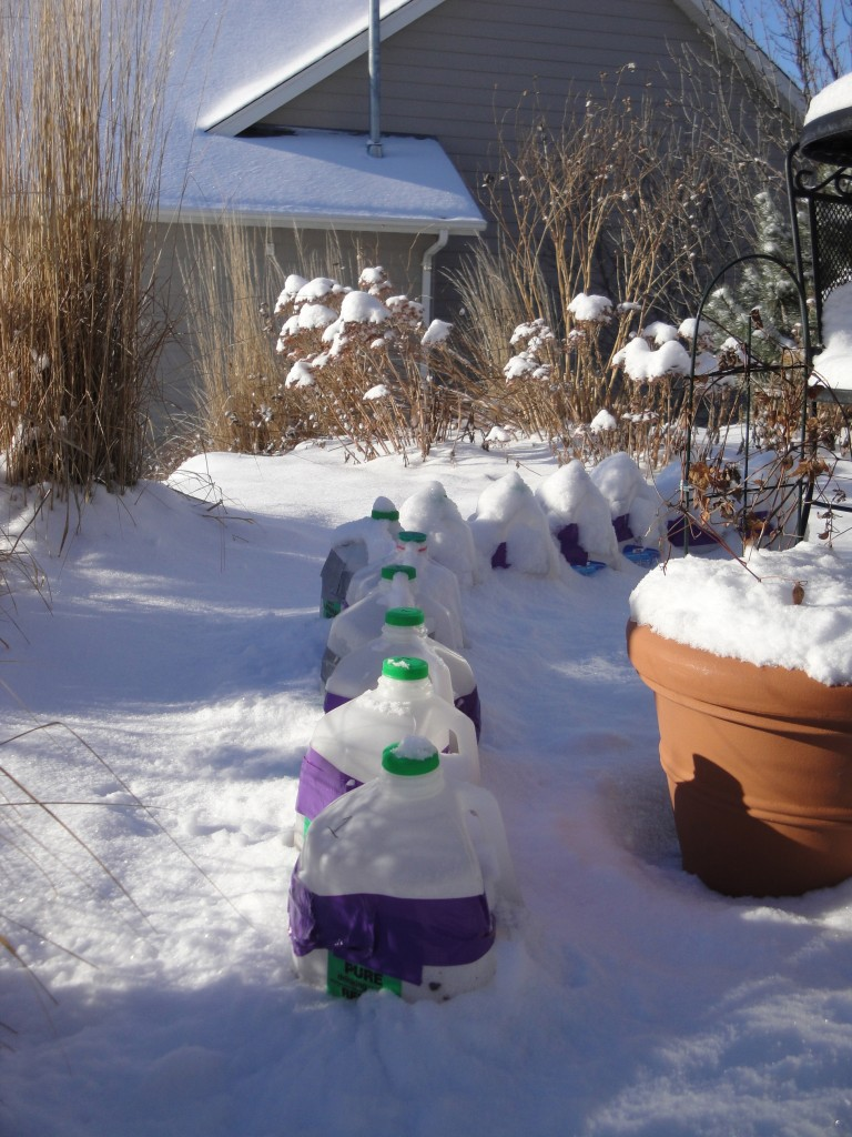 winter containers outside