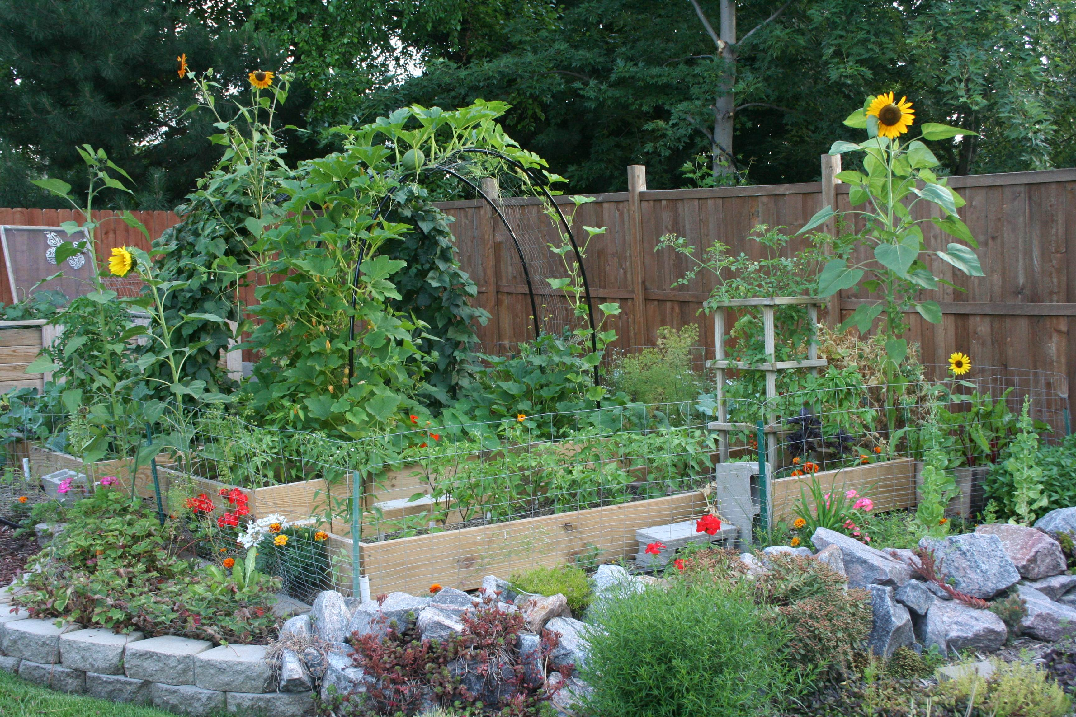 amy archway - Country Vegetable Garden Ideas