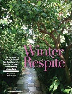 Winter Respite image