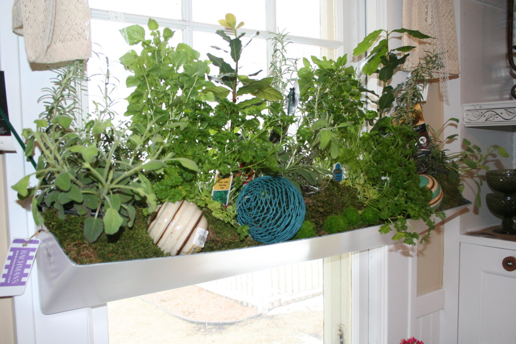 This self-watering planter holds herbs in pots.