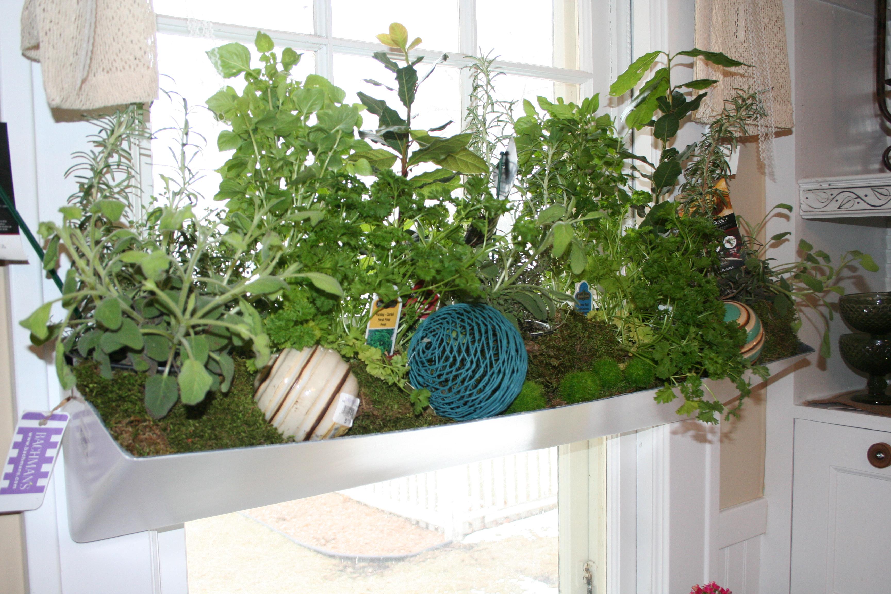 garden trends u2013 my northern garden