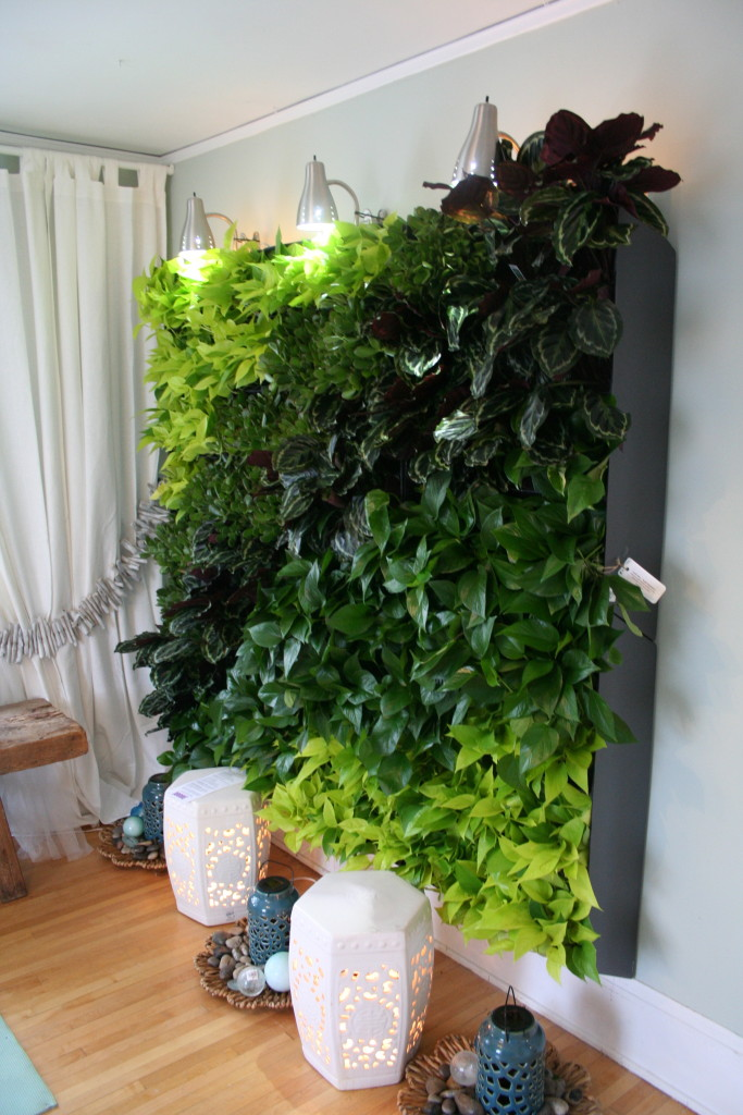 This dramatic wall of foliage includes six self-watering systems and a whole lot of plants!
