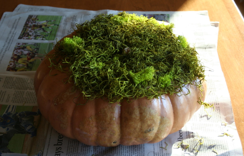 Spray adhesive on the top of the pumpkin and press moss on it.