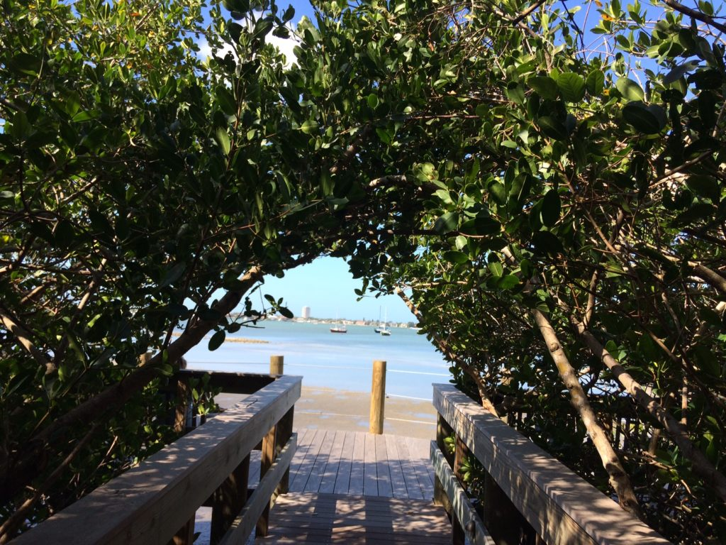 View of Sarasota Bay from Selby Gardens