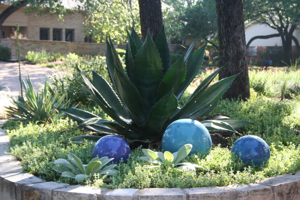 colorful orbs in texas garden