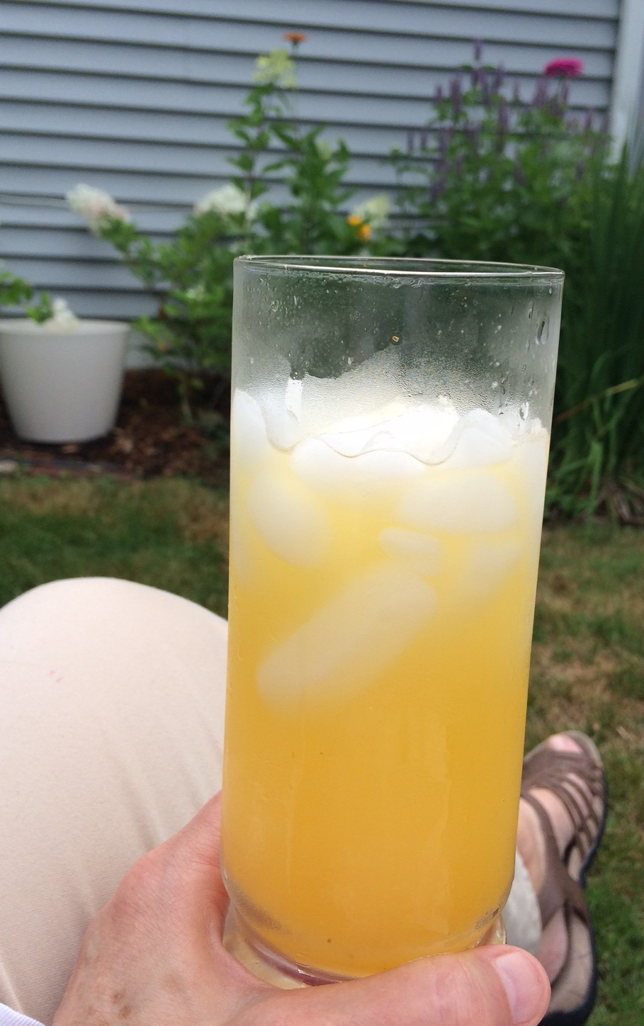 icy drink in garden