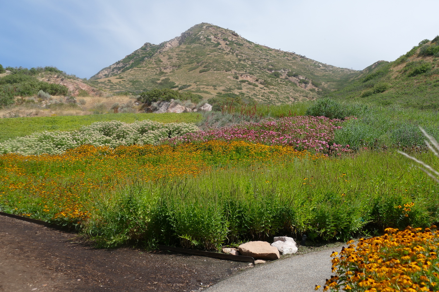 Red Butte Garden view