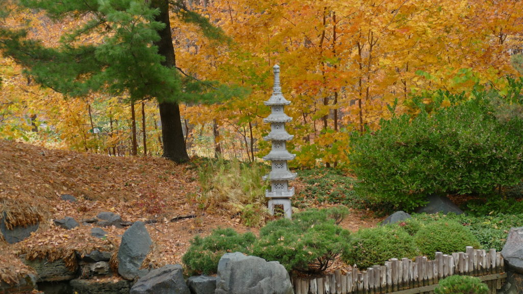 Fall color at Minnesota Landscape Arboretum with ornament