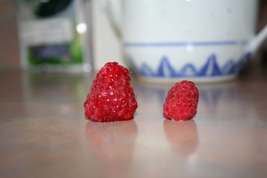 Two raspberries