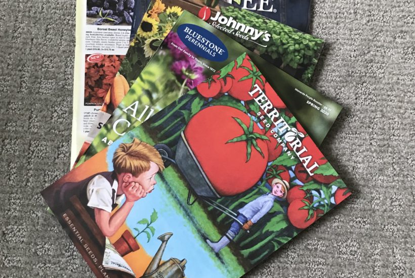 gifts for gardeners seed catalogs